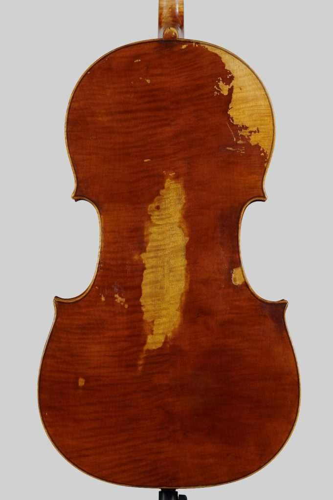 Back Guadagnini cello
